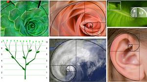 Análise técnica Fibonacci