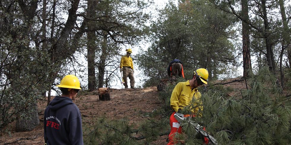 S-212 Wildland Fire Chain Saws