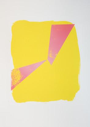 Rosa triangles