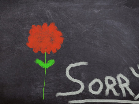 Should Children Say Sorry?