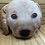 Thumbnail: Plush Pillow Puppy Faces, Used