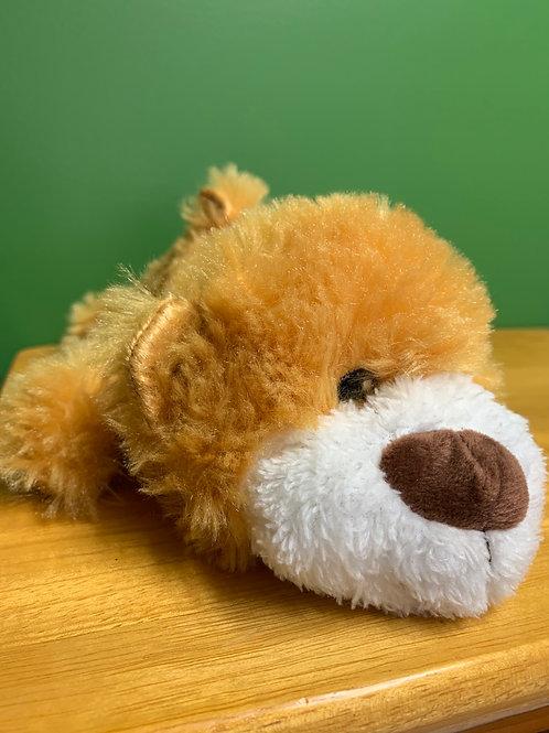 Sleepy Brown Bear