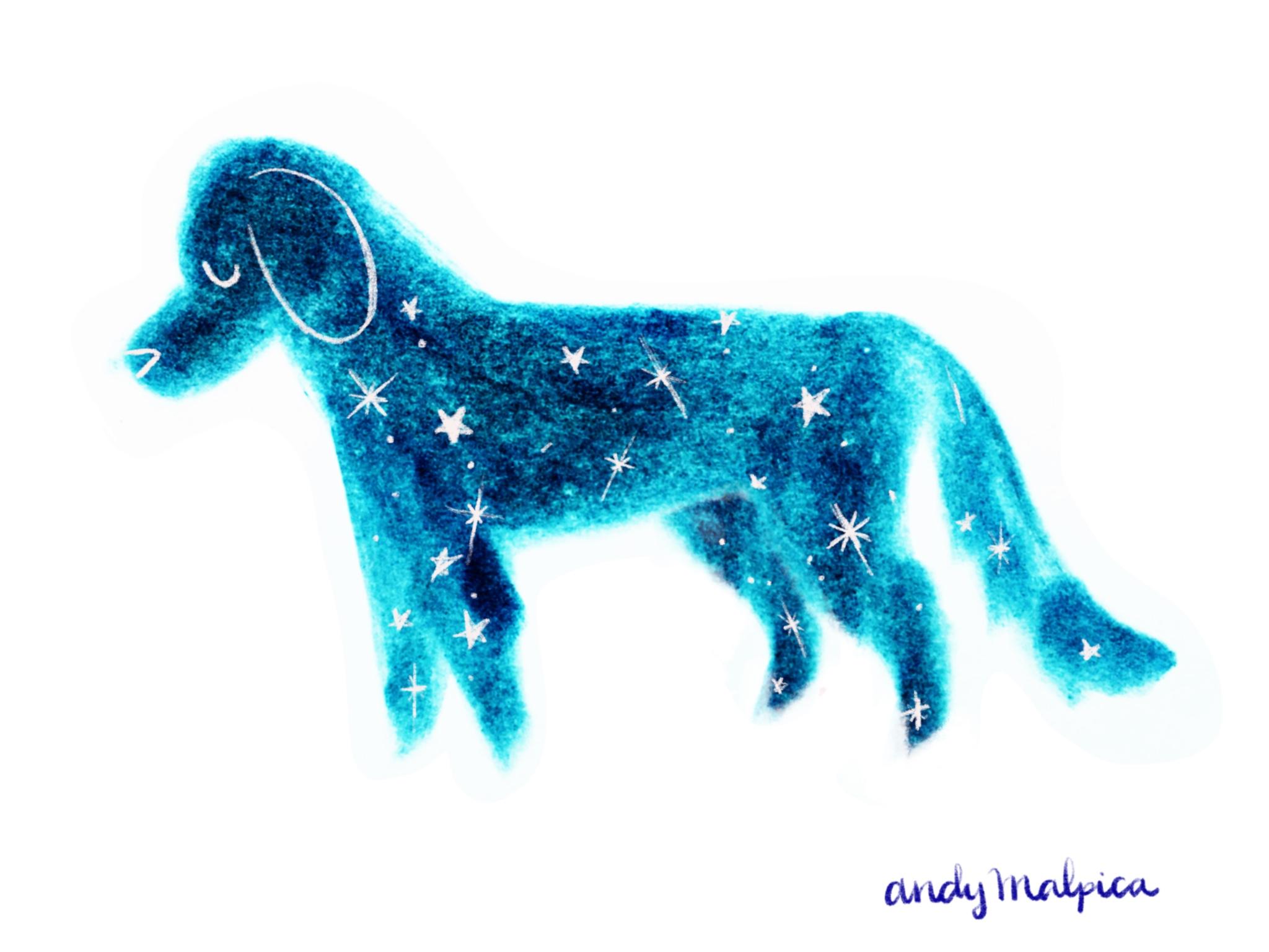 Constelación de perros