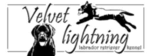 velvet lightning logo.jpg