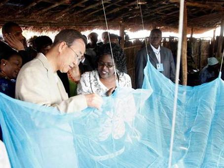 [成功電商]阿里國際站讓他年銷近2億RMB,賣了17年蚊帳,90%賣到非洲