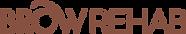 BR Logo dark.png