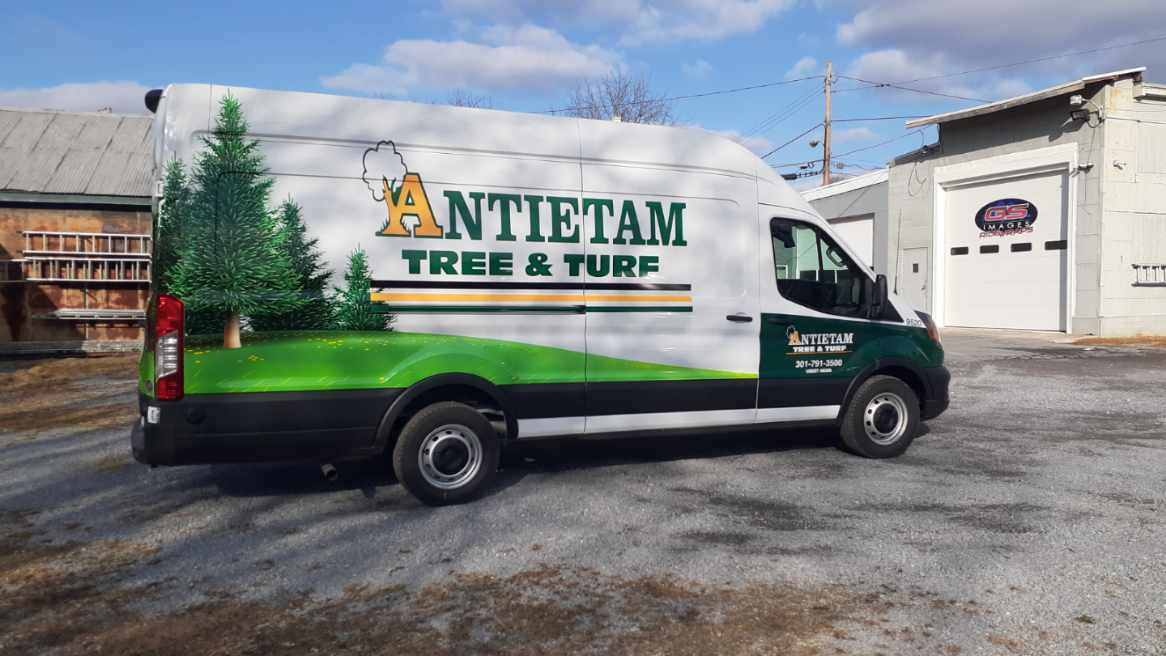 antietam tree van wrap.jpg