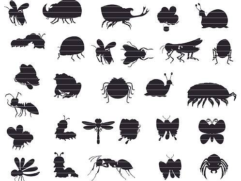 Insects Silhouette Bundle