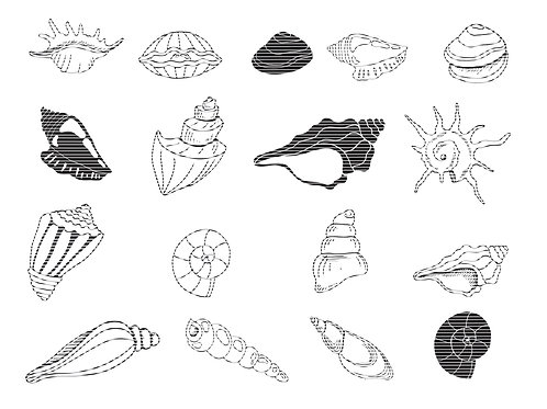 Hand Drawn Sea Shells Svg Cut Files