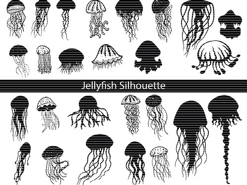 Jellyfish silhouette bundle
