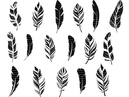 Feather Silhouette Svg Bundle
