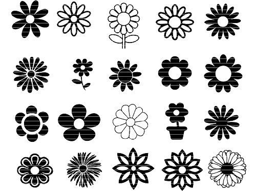 Daisy Svg flower Silhouette clip art bundle