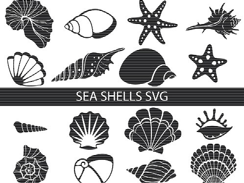 Sea Shells Svg
