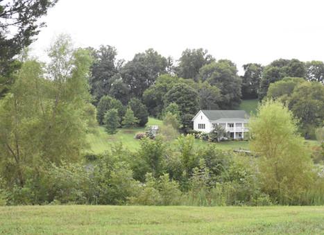 A breath of fresh air | Mint Springs Farms