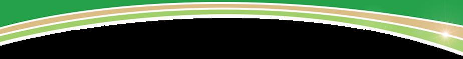 Eco-Friendly header graphic