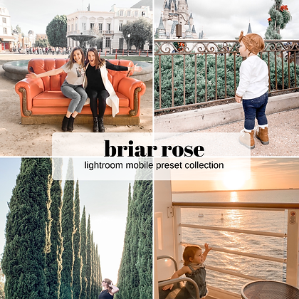 Briar Rose Preset Collection