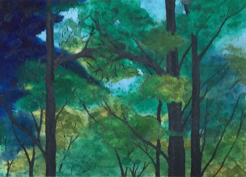 Forest Canopy / Pi i Faigs / Pine and Beech