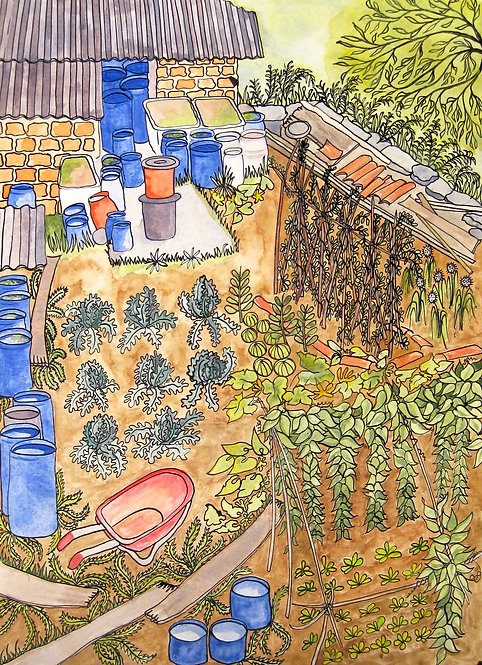 El Hort / Vegetable Garden