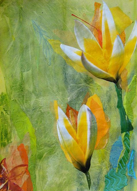 Primavera / Spring Collage