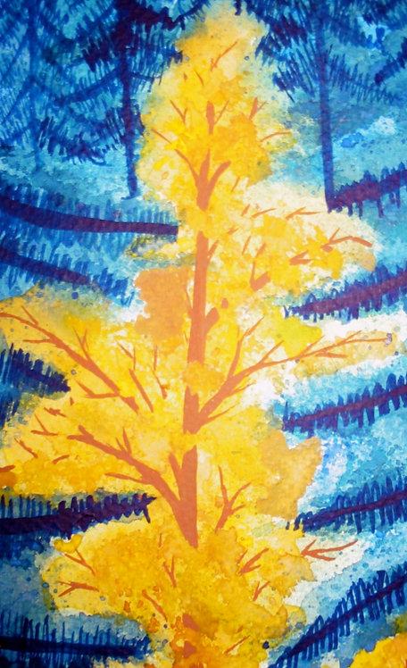 El Faig Entre Els Pins / Pinewood, Autumn