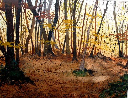 La Tardor / Autumn
