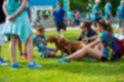 dogs on grass.jpg