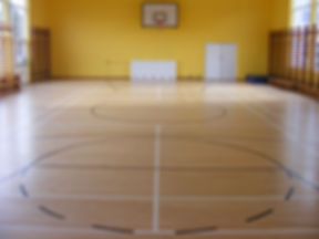 Sprung floor gym 1.JPG