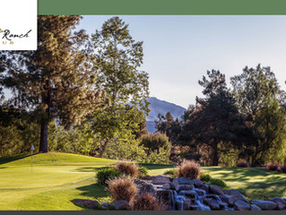 MSA 23rd Annual Golf Tournament - 2017