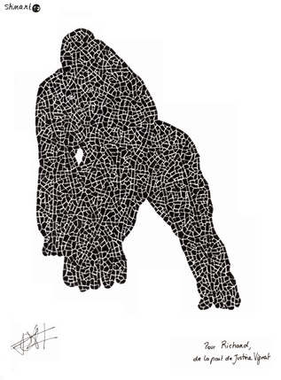 gorille.png
