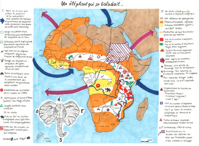 Un elephant qui se baladait