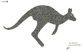 kangourou_img.png