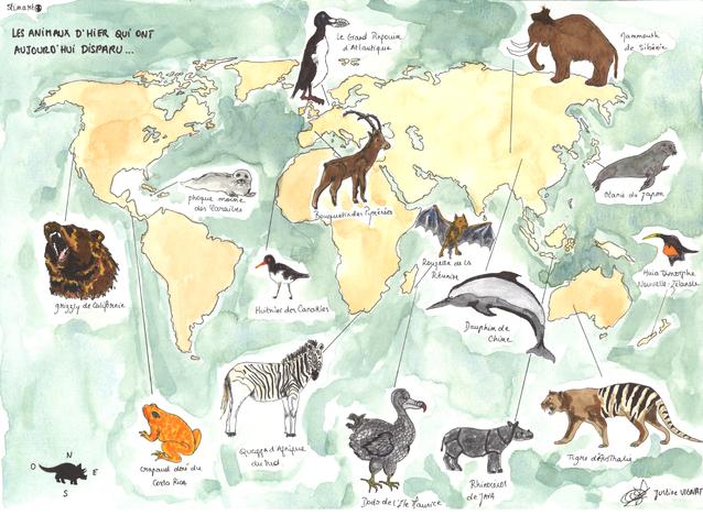 Les animaux qui ont disparu
