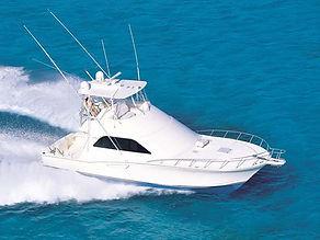 35 Ft Cabo   Zapphira Sport Fishing