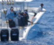 Shared Charters  Zapphira Sport Fishing