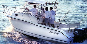27 Ft Sea Pro  Zapphira Sport Fishing