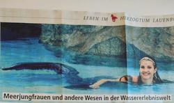 Zeitungsartikel über die Wassererlebniswelt 2018 in Geesthacht