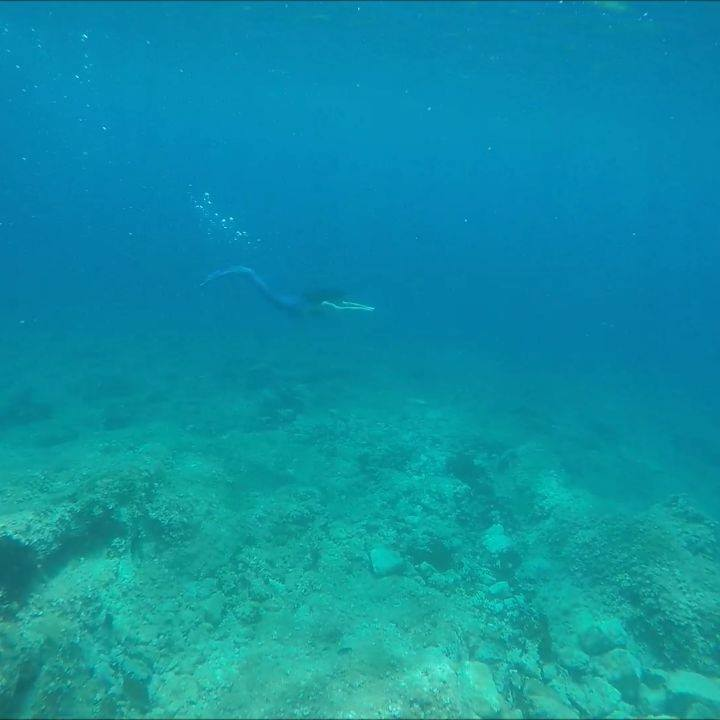 Mermaid Eraphira Videos