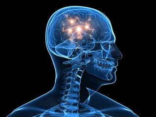 Badania: związek między mózgiem a układem limfatycznym