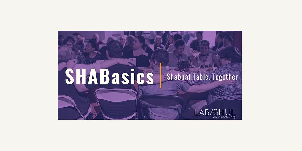 SHABasics