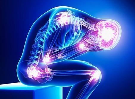 A Intervenção da Fisioterapia na Dor Crónica
