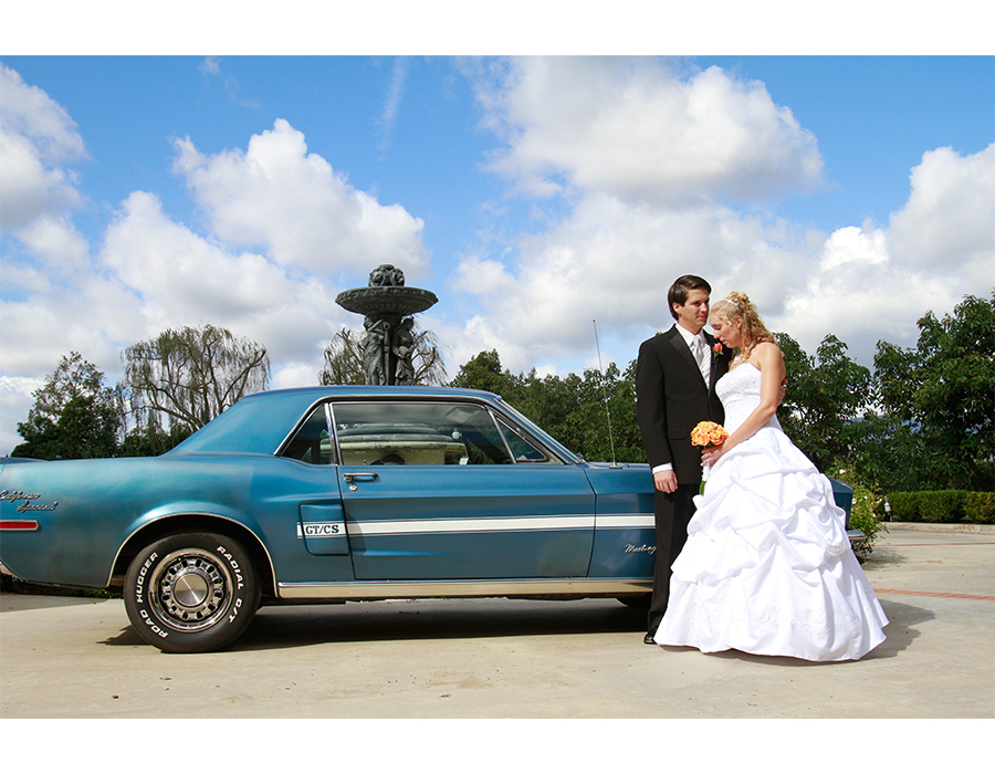 WeddingsImage800x450(25)