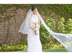 WeddingsImage800x450(22)
