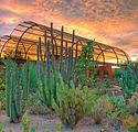 Desert Botanical Garden.jpg