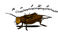 Crickets and quotes…