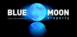 Blue Moon Property best real estate agen