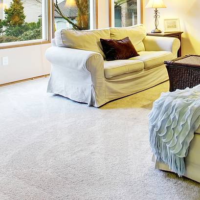 Carpet cleaning and repair