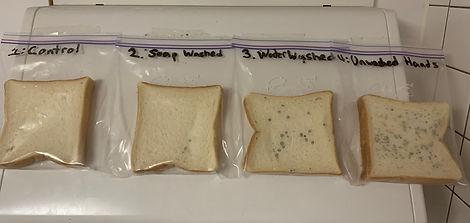 Week 3 Bread.jpg