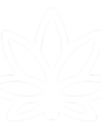 white_logo_transparent_edited_edited.png