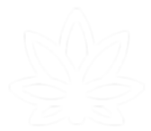 white_logo_transparent_edited.png