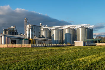 agro-processing plant for processing and